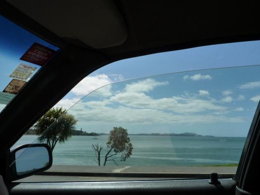 Road Trip to Paihia